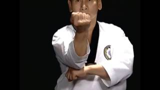 Basic Motions – CHIGI – Taekwondo Technics