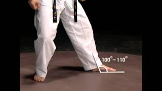 Basic Motions – SEOGI – Taekwondo Technics